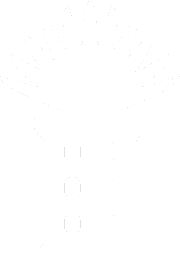Rootcity Press